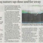 Review by Aidan Dunne in the Irish Times, 5 November 2019